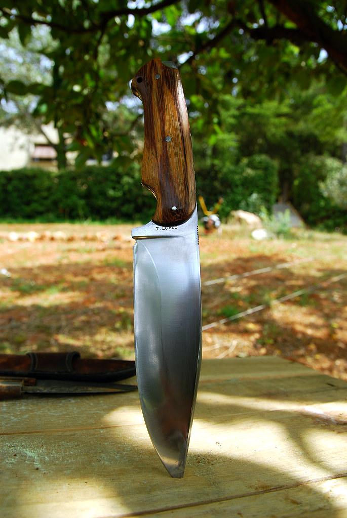 Des traces de couteaux dans les bois 16108614790_dacf8dcefc_b