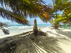 Belize_LaughingBirdCaye20140706_1408-2