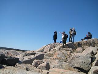 Conservation Fellowship Program, Oman