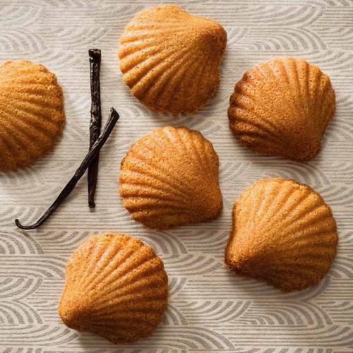 百變瑪德蓮:輕鬆烤出125道優雅法式貝殼點心!