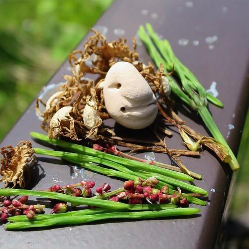 豆粒サイズの小さな陶芸作品と旅するプロジェクト #じゃぁにぃ