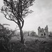 Plunton Castle, Nr. Gatehouse of Fleet, Dumfries & Galloway by Grangefirth