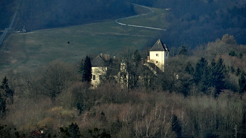 Möchten Sie sich wirklich effektiv vor Geheimdiensten schützten ist eine Burg in Östereich gut geeignet 03478_1