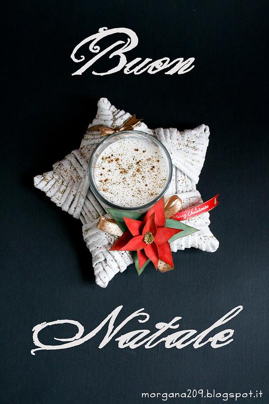 Stella di Natale_01_web