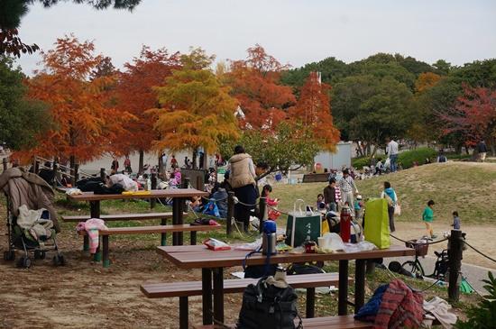 hattoriryokuchi20144
