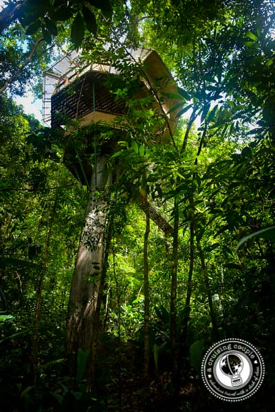 Treehouse in Costa Rica