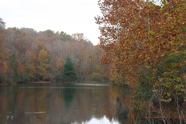 James River State Park Fall 2014 (250)