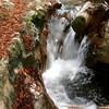 Otra foto del río en #Miahuatlán