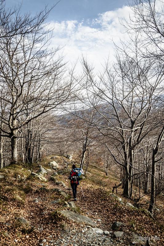 sentiero nel Vallone della Balma