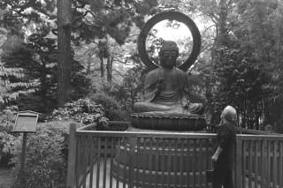 Japanese Tea Garden - Buddha
