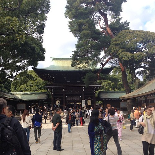 Yoyogi Park -- the shrine's courtyard.