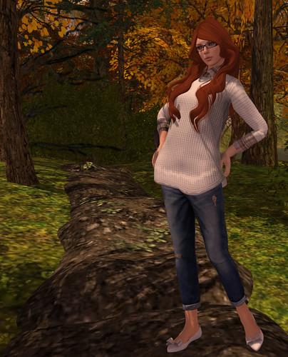 Auburn in Autumn I