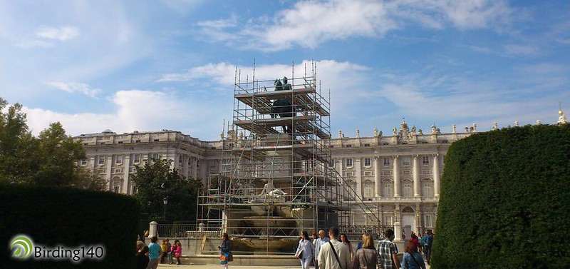 The meet-up place: Equestrian statue of Philip IV in Plaza de Oriente