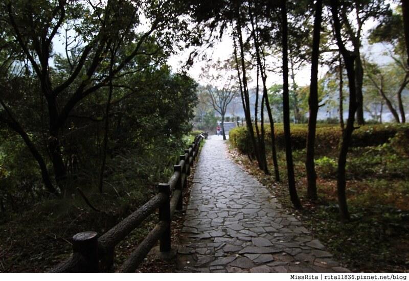 清境觀光巴士 奧萬大森林遊樂區 賞楓38-