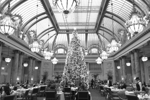 Christmas in the City - The Palace Hotel Garden Court