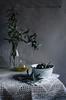 Aceitunas y ramas de olivo
