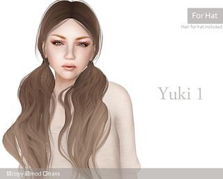 elua_yuki1