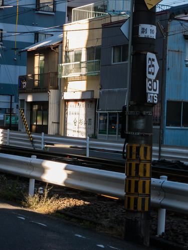 shizuoka1412- (6 - 10)