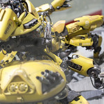 GBWC2014_World_representative_exhibitions-20