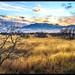 Fort Huachuca by Steve Deger