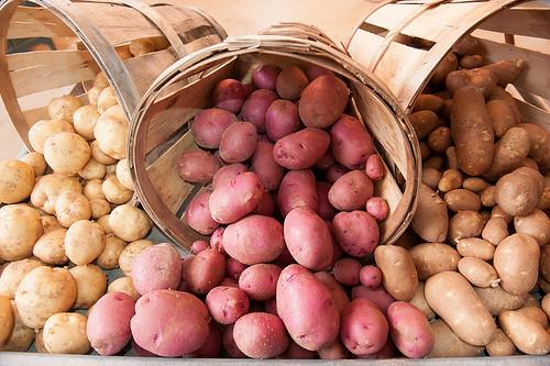 中國政府推動以馬鈴薯作為主食,旨在減少污染、遏制用水及緩解對昂貴進口食品的依賴。圖片來源:United Soybean Board