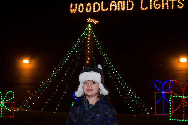20141222-Woodland-Lights-6035