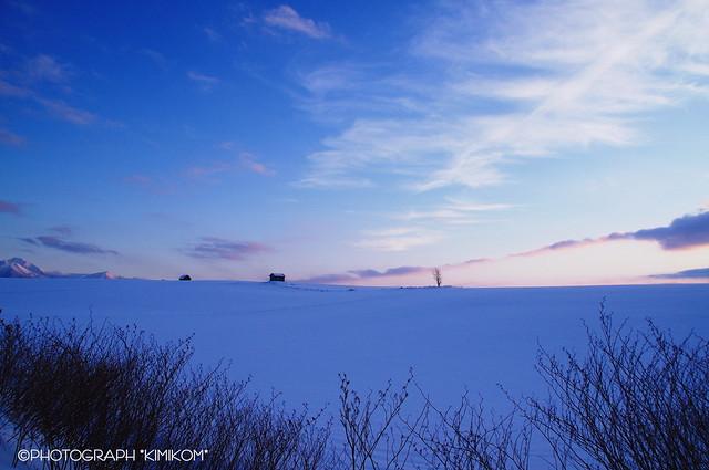 冬の夕暮れ2
