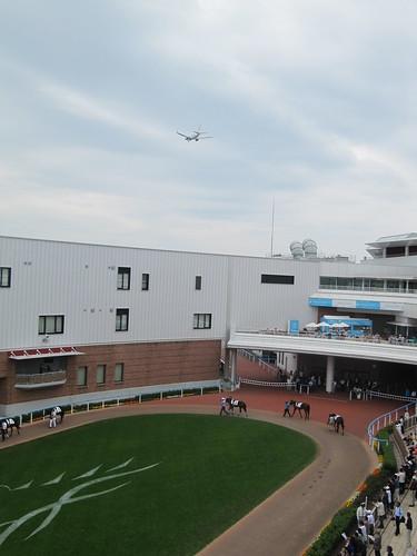 函館競馬場での航空機とパドック写真