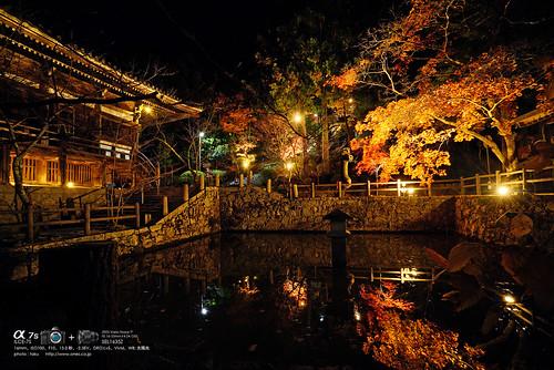 播州清水寺 DSC04641 (1)