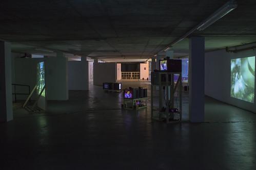 Savorr Installation - 30
