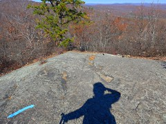 Fall - Norvin Green State Forest