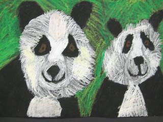 Panda by Katie G.