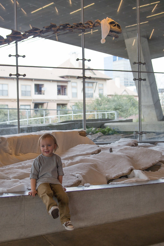 Santa Dinosaur at Perot Museum