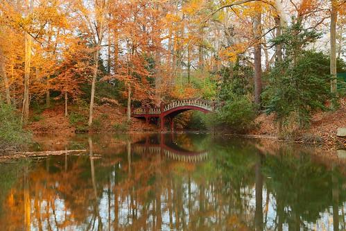 bridge autumn reflection fall college water virginia mary william dell williamsburg crim tribe collegeofwilliammary crimdellbridge