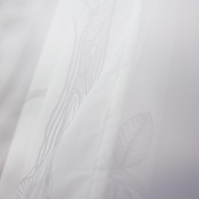 [259] Opaque