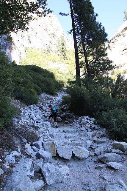 Sw itchback delight! Yosemite
