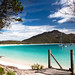Tropical Tasmania by Two Big Paws