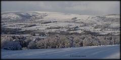 Winter landscpe