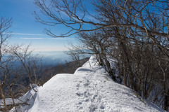 駒ケ岳より雪庇の稜線を南下