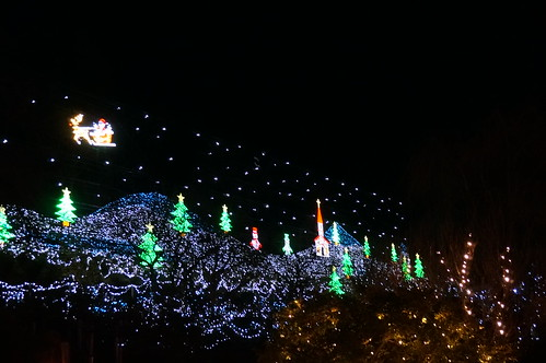 Flower Fantasy 2015 illumination at Ashikaga Flower Park 12