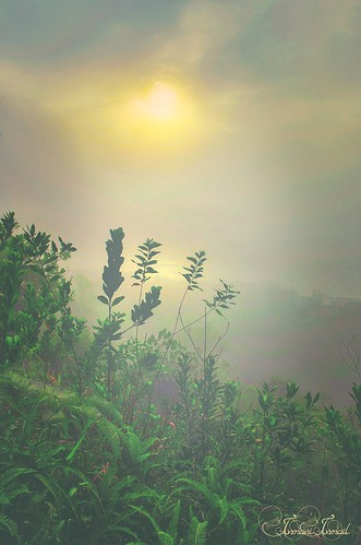sunrise brunei heavenhill bruneilandscapiers