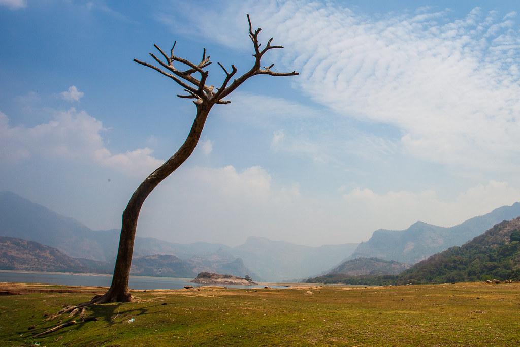 Aliyar dam