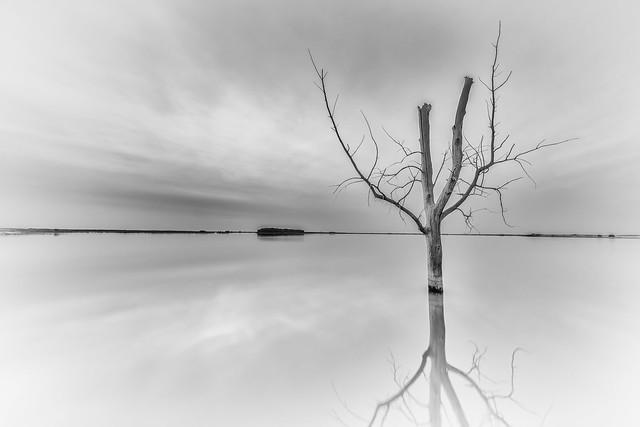 Harriet Lake 3.0