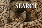 search-pf