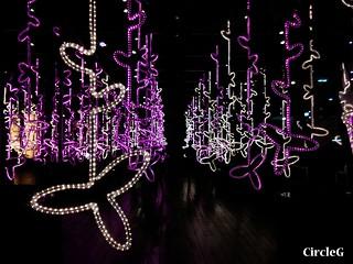 11 CIRCLEG 尖沙咀 1881 沙田新城市廣場 透明迷宮 (3)