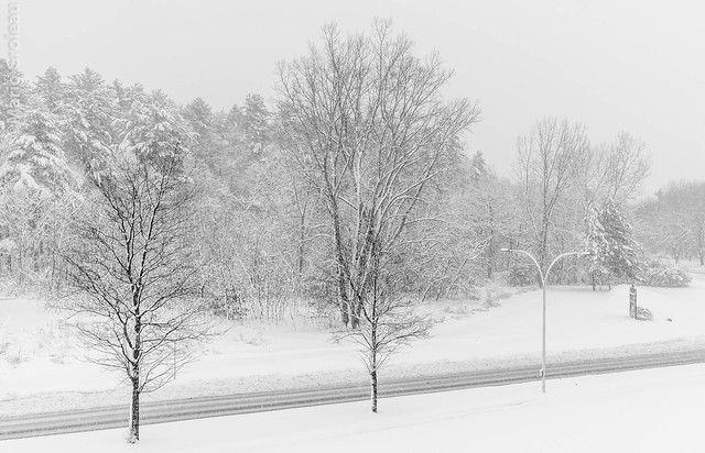 La neige sur Trois-Rivières