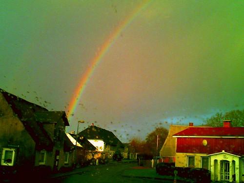 312/365 • rainbow