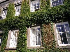 Trinity College Houses