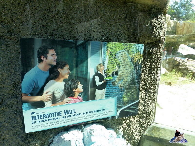 San Diego Zoo 10.11.2014 123