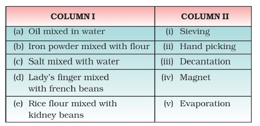 Class 6 Important Questions for Science Separation of Substances – Separating Mixtures Worksheet